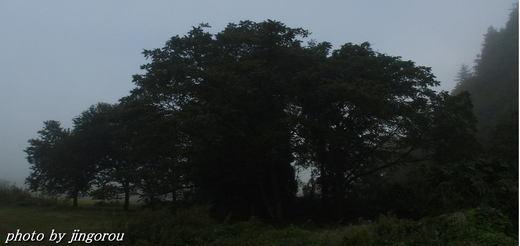 170925-9.jpg